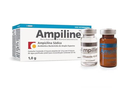 AMPILINE SMALL